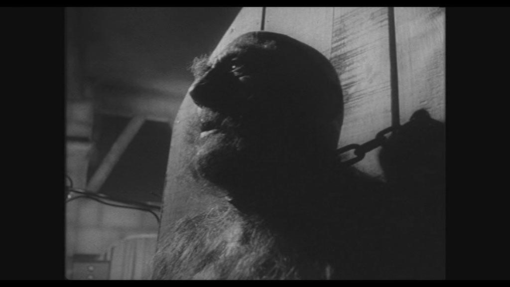 Monstre ressuscit le horreur fantastique gothique for Miroir film horreur
